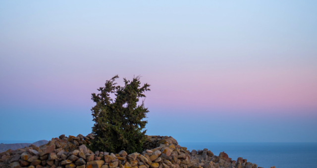 Sunset, Eresos, Lesvos, Mytilene, colous, sea, rocks, tree
