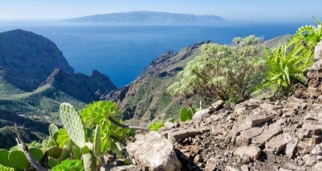 Vista al mar desde La Gomera