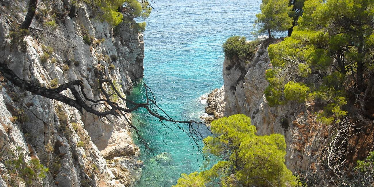 Secluded cove with emerald waters and trees in Skopelos
