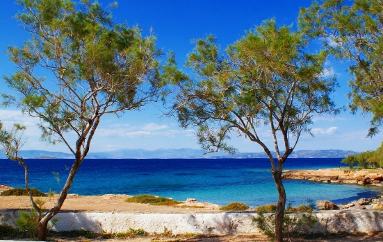 Small bay in Aegina with blue waters and trees