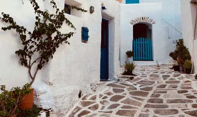 traditional Cyclades, white house with blue windows, sidewalk, plants, Paros - Antiparos
