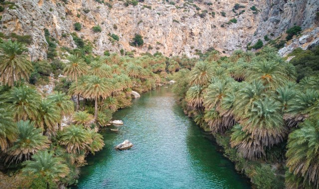Preveli beach surrounded by palm trees