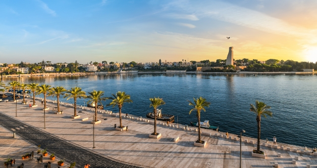 Brindisi port with palm trees