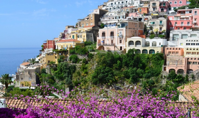 Purple flowers, threes, italian architecture, buildings, Positano, Ischia, ferry routes