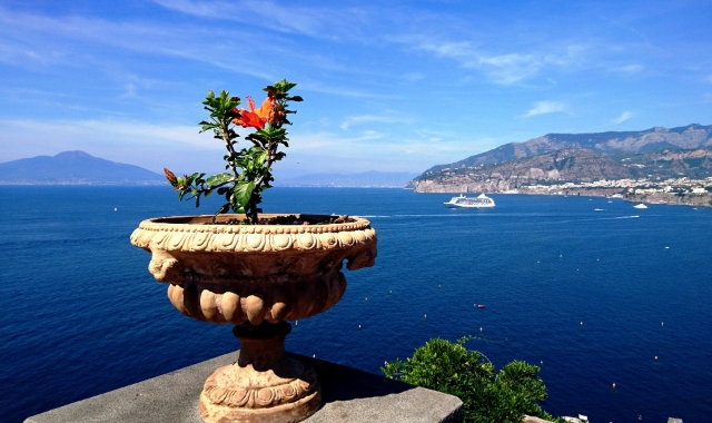 Red and green flower, sea view, port of Sorrento, Capri, ferry routes