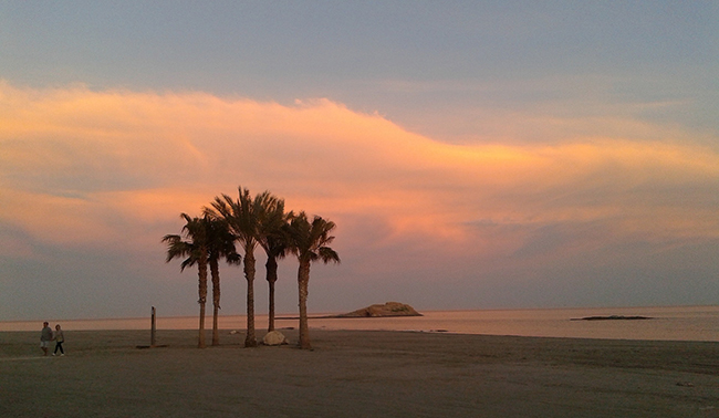 Beach with palm trees in Almeria, sunset colours, holidays in Andalusia, ferry tickets to Morocco, Algeria, Melilla
