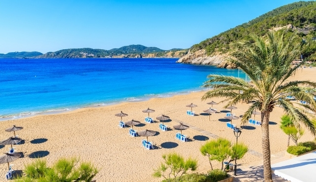 ibiza, beach, sun, blue, umbrellas, palms trees, exotic, sand, spain