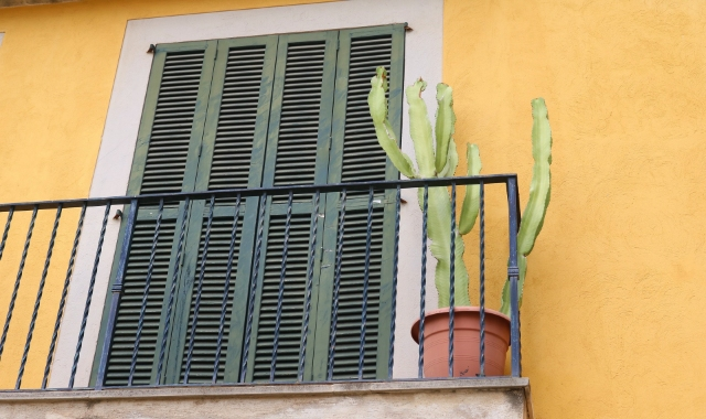 Yellow, Balcony, Green, Window, Cactus, Mallorca, Valencia, Ferry Tickets