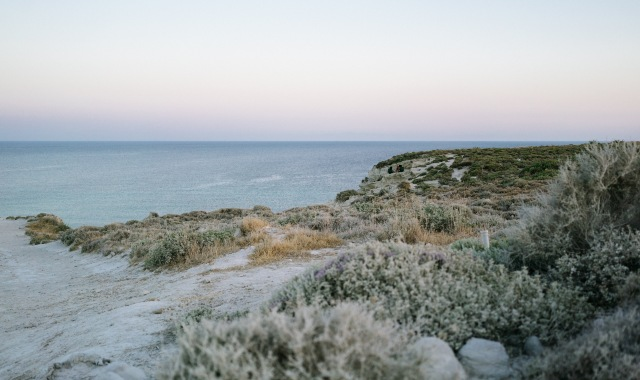 sunset hour in the beach, purple and pink sky, green bushes, ferry trip to Cesme